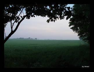 Fields in Green by mimir