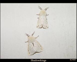ShadowKings by mimir
