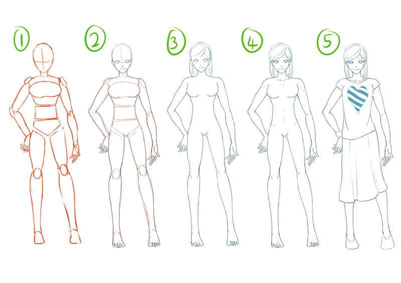 Tutorial- Female Anatomy by fingernailtreez on DeviantArt