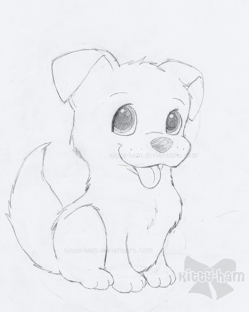 how to draw a puppy draw so cute