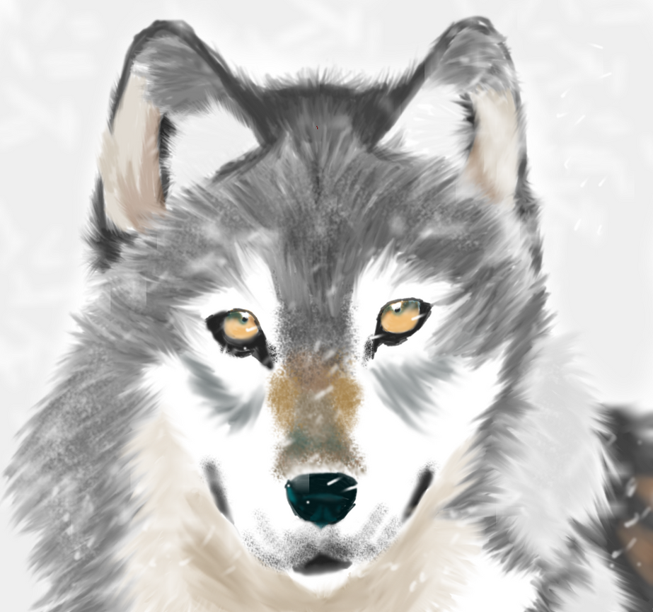 Wolf by NikaTheDrake