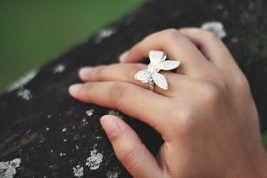 The Ring by shakina-razale