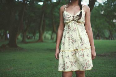 The Dress by shakina-razale