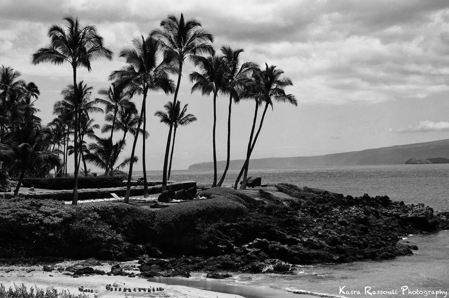 Maui island by KasraRassouli