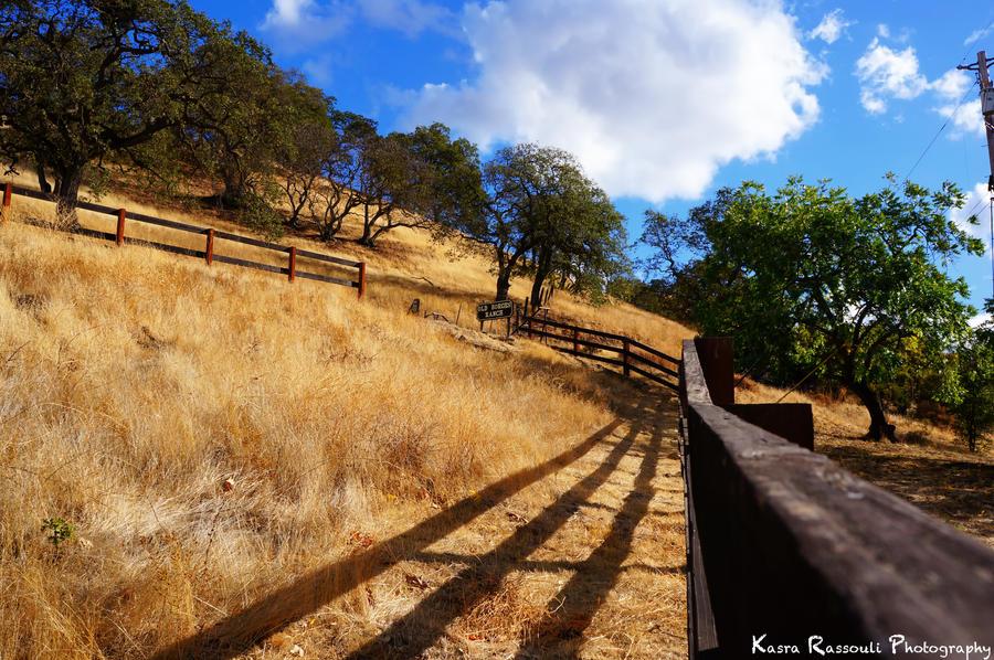 Countryside Walnut Creek by KasraRassouli