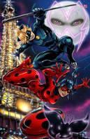 Miraculous - Ladybug and ChatNoir by TyrineCarver