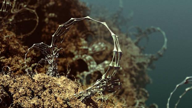 Reefs of Europa