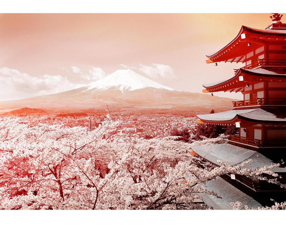 Fuji Cherry Blossoms by britmodtokyo