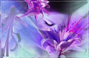 .:.Lilium Dream.:.