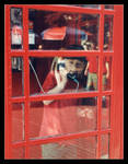 .:.The Red Phone Booth.:.
