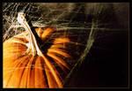 .:.Spiderwebs.:.