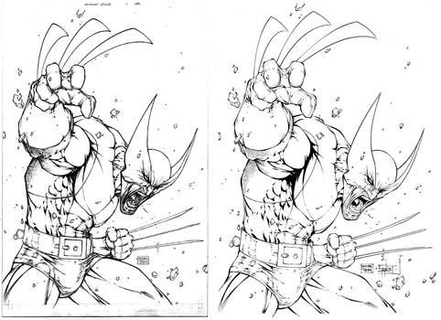 Wolverine by Mike Turner