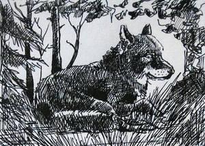 KaKAO 74 Inktober Wolf
