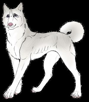 Anastacia profile