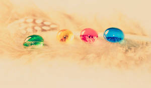 Feathered Drops