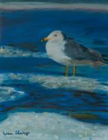 Bird among the snow