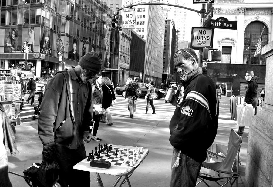 Your move by avocets