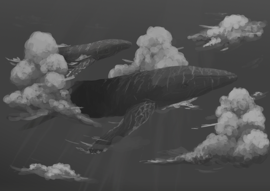 Sky whales by opplet