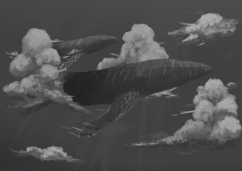 Sky whales by PretzilWolf