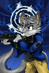 Character Design: Midnight the Fox
