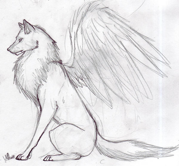 Winged Wolf Pup Drawing