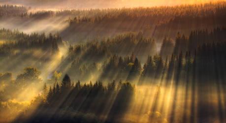 Lasers show by PawelUchorczak
