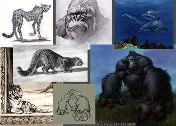 Animal Samples