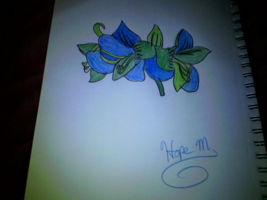 Flower by HopeCaliGirl24