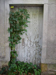 Old door... by Sweet-Eny