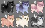 Cheap doggo adopts [2/6 OPEN] by NightyART