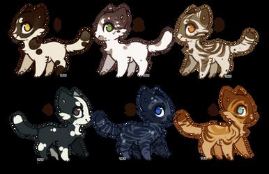 Adopts: Cats [3/6 OPEN] cheap!