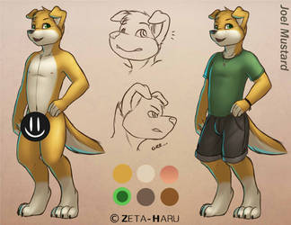 Meet Joel by Zeta-Haru