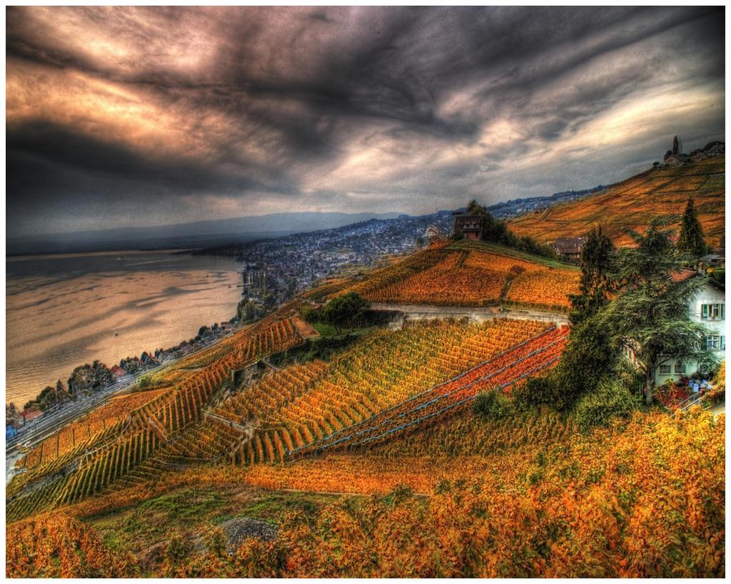 Swiss Lavaux - Autumn by superjuju29