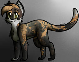Calico Cat by 34804