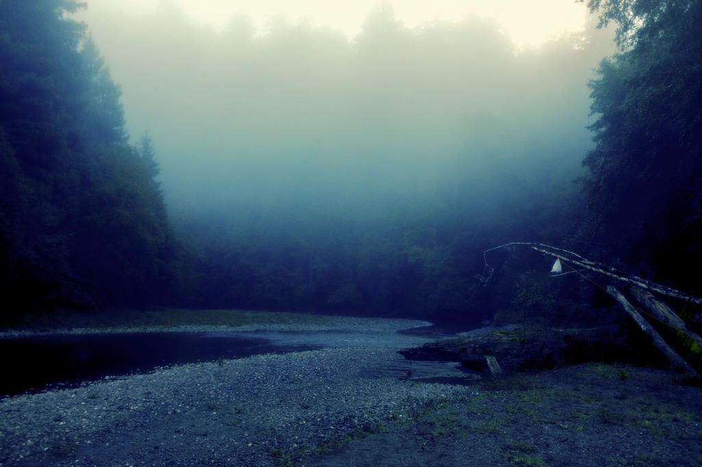 Foggy Morning by blakelemmons
