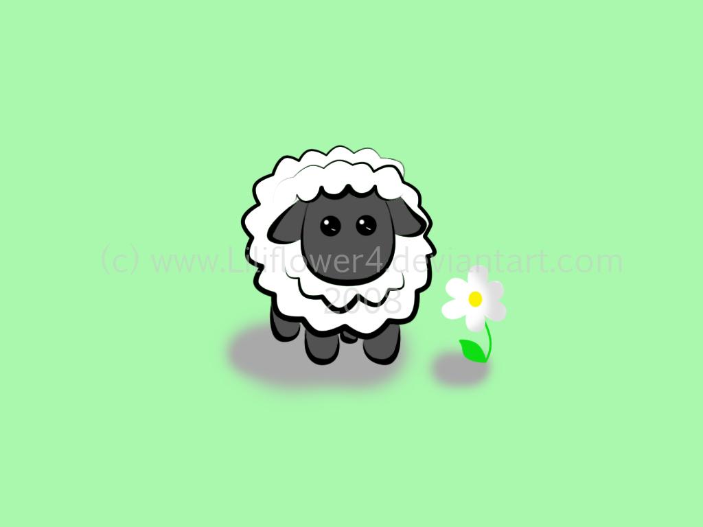 Photo Collection Sheep Wallpaper 1 You