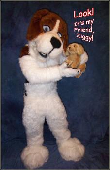 My Friend Ziggy