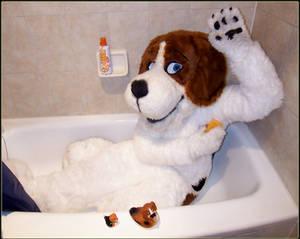 Cheesebeagle in a Tub