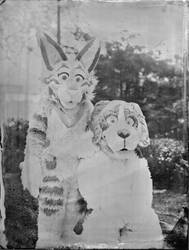 Cheese and Tig Tin-Type Picture
