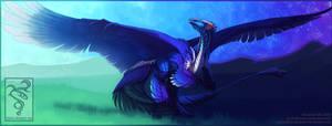 SS: Sardyrix by Shinerai