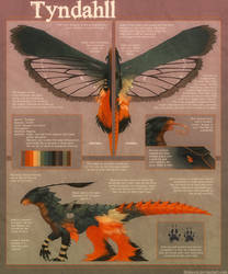 Tyndahll Reference. by Shinerai