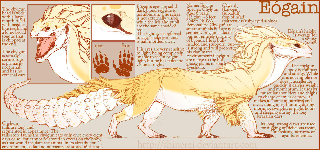 Eogain Ref by Shinerai