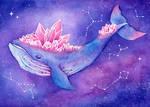 Galaxy Whale