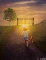 Photoshop Manipulation |Girl by TuriZsolt
