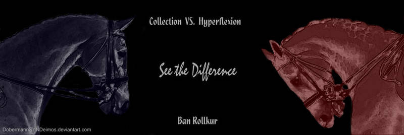 Ban Rollkur!