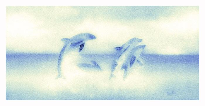 Douphins by noahz