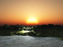 Sunset Forest by akaPREDADOR
