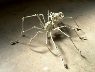 Endoskeleton Spider by Deino3330