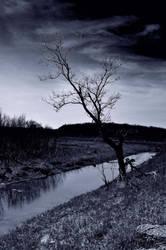 near a stream by xshadow78
