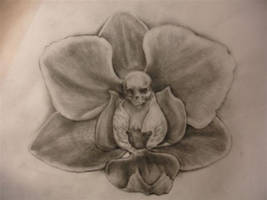 death orchid by CHICANOCHOP